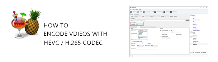 encode-h265-hevc-with-handbrake