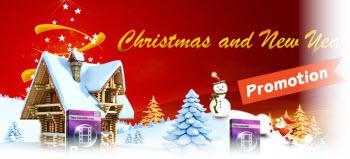 christmas-sale1-banner.jpg